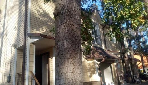 Продажа дом с ремонтом в районе лесной Бучи в городе Буча. Агентство недвижимости